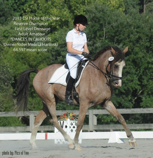 CSI 2013 Horse of the Year Reserve Champion First Level Dressage