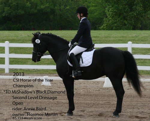 CSI  2013 Horse of the Year_Second Level Dressage