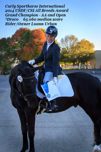 2014-usdf-csi-all-breeds-grand-champion-open-and-adult-amateur-second-level-dressage-draco-riderandowner-luann-urban