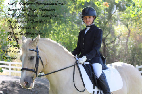alyssa-and-bold-adventure-2016-usdf-all-breeds-champion-horse-of-the-year-champion-jr-and-open-divisions-first-level-dressage
