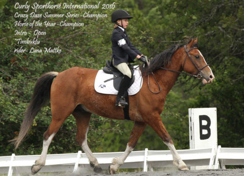 luna-mattke-and-timbuktu-2016-cdss-and-hoy-champion